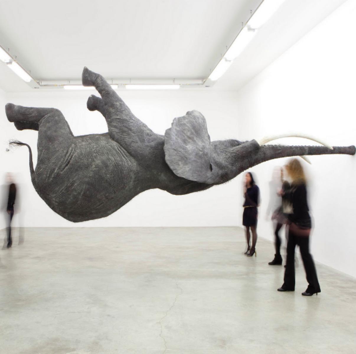 Animals in art, Daniel Firman