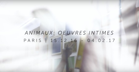 Animaux : oeuvres intimes