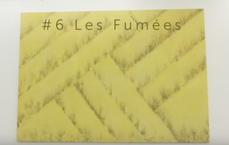 SOS - SUPPORTS OU SURFACES #6 FUMÉES